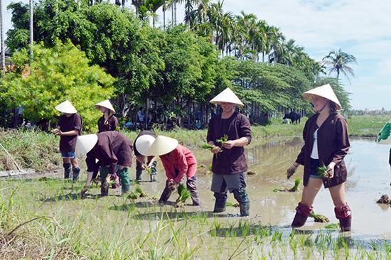Du khách thích thú với các hoạt động du lịch trải nghiệm làng quê.