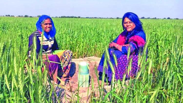 Kaser Behan bên hệ thống trữ nước mưa cho mùa khô tại Gujarat.