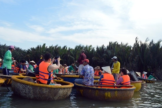 Numerous tourists to Cam Thanh nipa forest