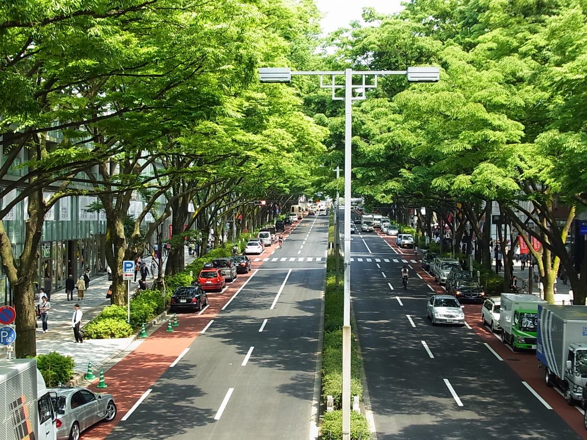 Cây xanh phủ lối đường phố tại Tokyo. Ảnh: tohokuandtokyo