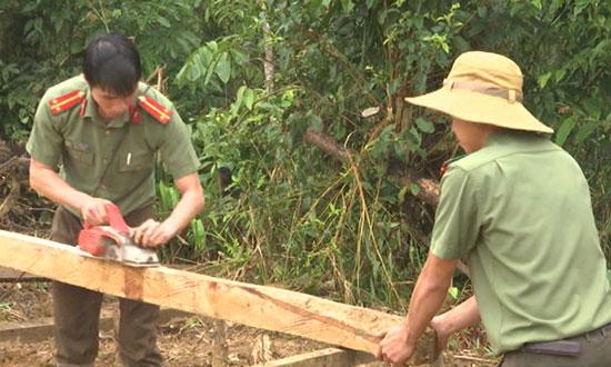 Trung úy Phan Thanh Tuấn cùng cán bộ chiến sĩ Công an huyện Nam Trà My giúp bà con vùng sạt lở làm nhà tại nóc Khe Chữ. Ảnh: X.MAI