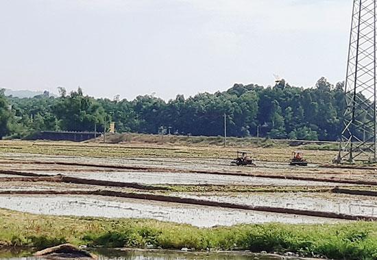Nhiều địa phương trong huyện Đại Lộc đang làm đất chuẩn bị xuống giống. Ảnh: H.L