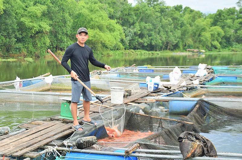 Anh Nguyễn Văn Nghĩa bên mô hình cá lồng bè tại sông Tam Kỳ. Ảnh: