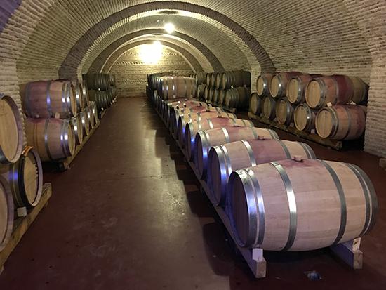 Một hầm rượu vang trong lâu đài.