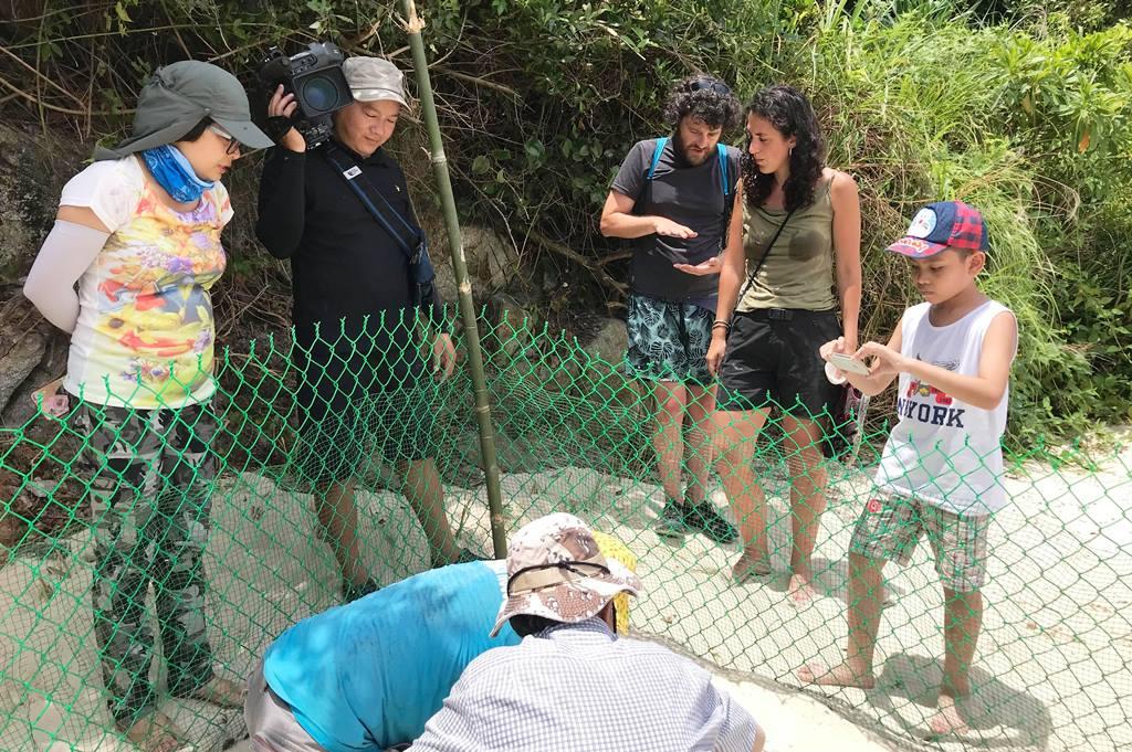 Hatching turtle eggs in Bai Bac (Cham Islands)