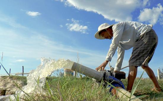 Chi phí mua nhiên liệu để bơm nước lên ruộng khá nhiều nên thu nhập từ nông nghiệp rất thấp. Ảnh: V.B.T