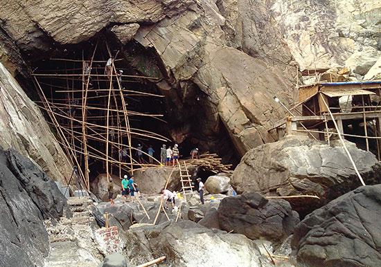 Khai thác yến sào tại hang Tò Vò - Cù Lao Chàm. Ảnh: Q.HẢI