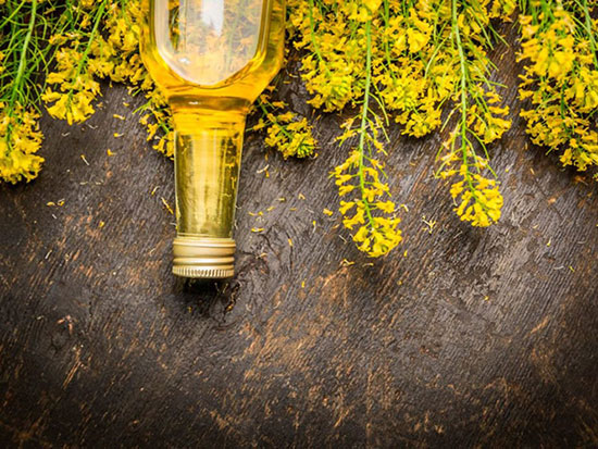Dầu hoa cải là 1 trong 5 loại dầu tốt trong nấu ăn. Ảnh: Shutterstock