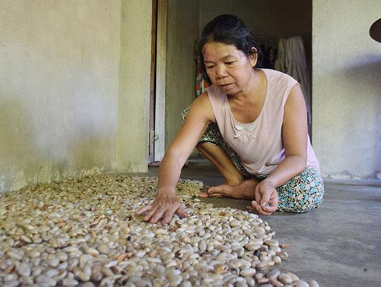 Bà Nguyễn Thị Lang tranh thủ phơi hạt mít bán để kiếm tiền đi viện. Ảnh: THANH THẮNG