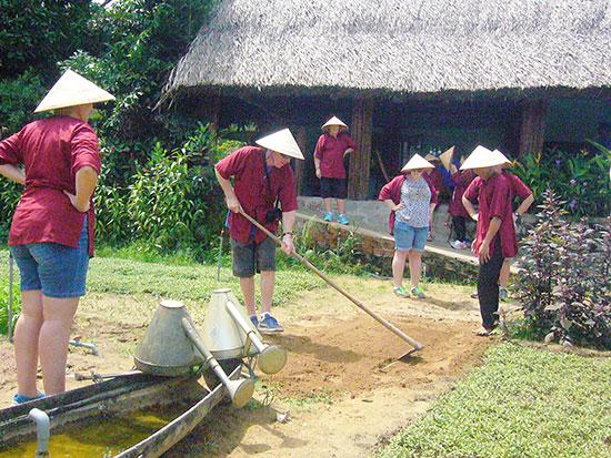 Planting vegetables in Tra Que vegetable village