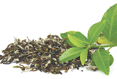 Lá trà làm ruột gối, dùng để phòng bệnh cao huyết áp
