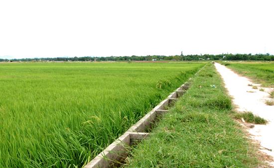 Thôn Bình Hòa hoàn thành 80 đường giao thông và kênh mương nội đồng.