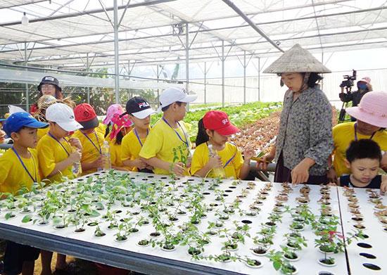 Học sinh trải nghiệm những giờ học thú vị tại vườn rau nhiệt đới Kapi.