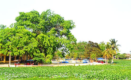 Công viên văn hóa bàu Hà Kiều. Ảnh: QUANG VIỆT