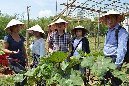 HTX Nông nghiệp Triêm Tây thuộc Làng du lịch cộng đồng Triêm Tây tạm ngưng hoạt động. Ảnh: K.L