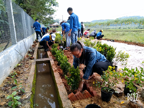 Đoàn viên, thanh niên làm sạch cỏ để trồng các loại hoa.