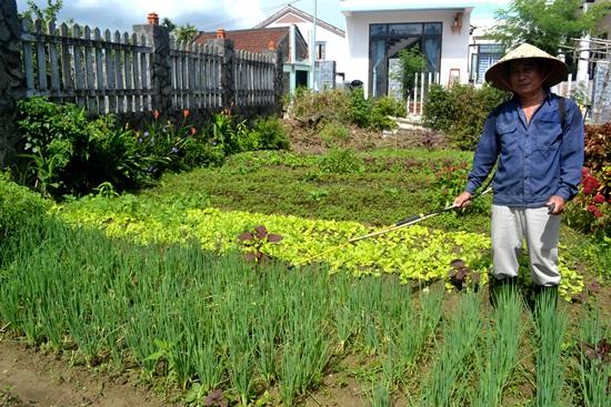 Người nông dân chăm sóc rau hữu cơ. Ảnh: QUANG VIỆT