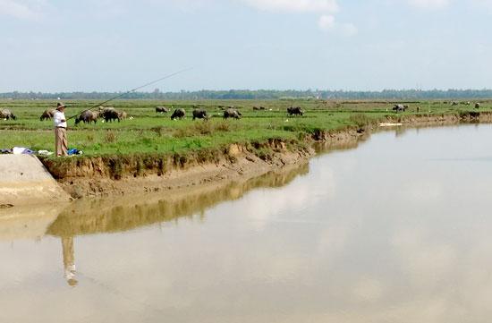 2 bên bờ ở phần hạ lưu Đập Cầu bị sạt lở, ảnh hưởng đến đất sản xuất của nhân dân. Ảnh: PHAN VINH