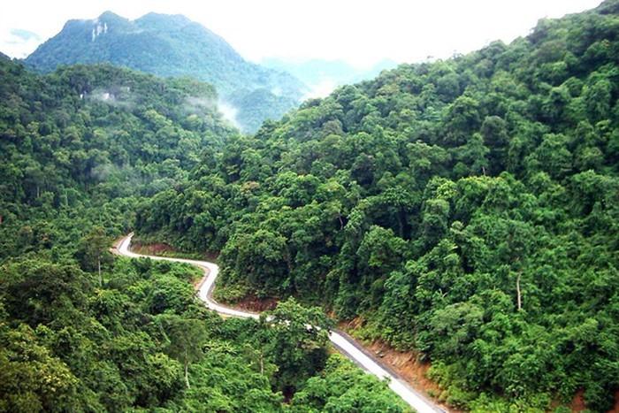 Photo: baotainguyenmoitruong