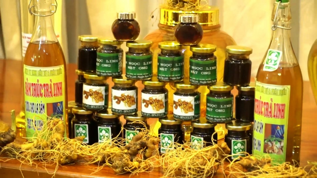 The root of Ngoc Linh ginseng and products from the ginseng.