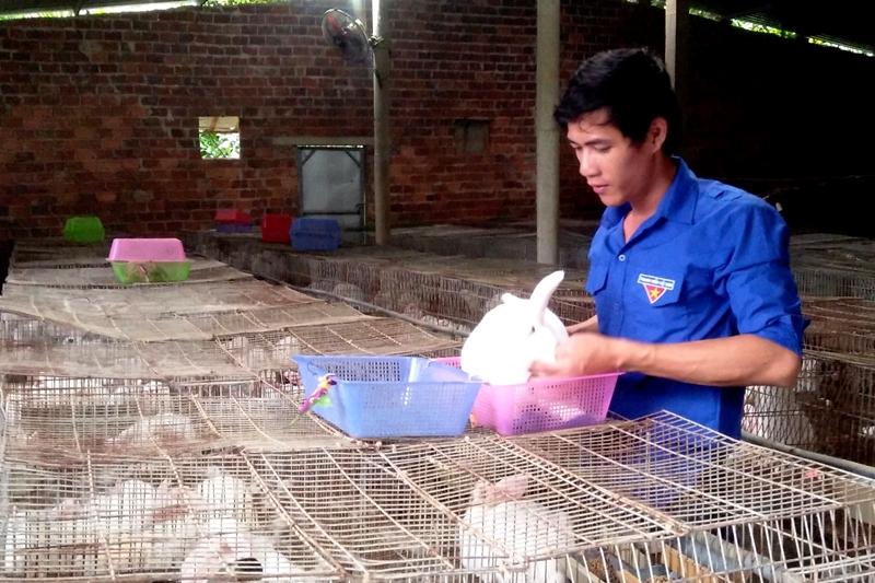 Mô hình chăn nuôi khép kín đầy hiệu quả giúp Nguyễn Văn Thành có thu nhập cả trăm triệu đồng mỗi năm. Ảnh: SƠN ĐẠO