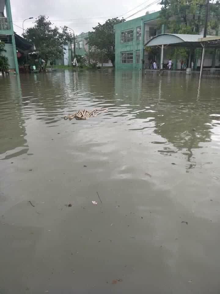 BVĐK Quảng Nam lo ngại môi trường ô nhiễm khi bị ngập lụt.
