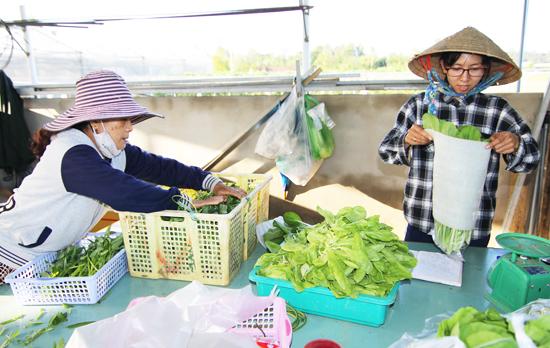 Phú Ninh tập trung sản xuất theo hướng thực phẩm an toàn. Ảnh: PHAN VINH