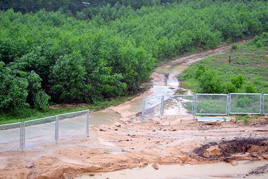 Bên cạnh nhiều đoạn chưa lắp đặt, không ít vị trí hàng rào bảo vệ thuộc cao tốc Đà Nẵng - Quảng Ngãi bị ngã đổ, hoặc bị lấy mất chưa được chủ đầu tư bổ sung.