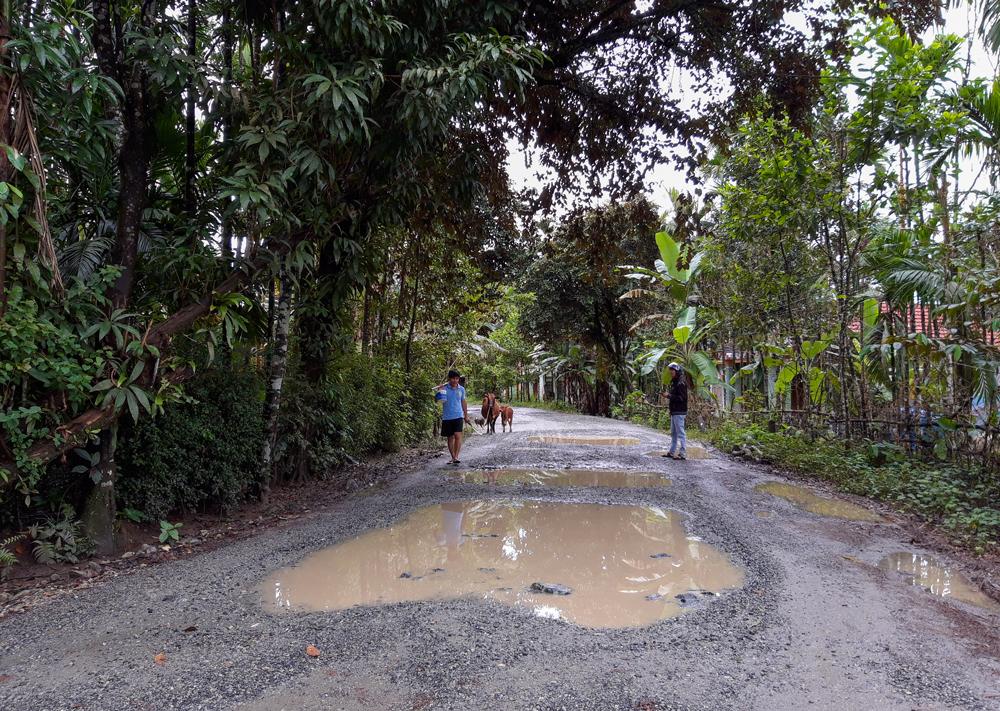 Những ổ gà ứ đọng nước khiến tuyến đường trở nên lầy lội. Ảnh: HỒ QUÂN