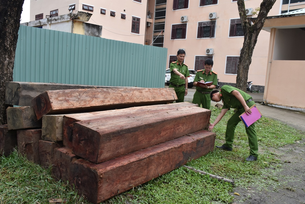 Số gỗ tang vật bị tạm giữ. Ảnh: Q.H