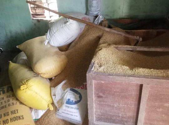 Nơi bà H. trình báo bị trộm đào xới kho lúa lấy trộm vàng. Ảnh: Đ.C