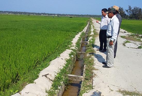 Xã Bình Sa đã xây dựng thêm nhiều tuyến kênh bê tông để sử dụng nước tiết kiệm từ Trạm bơm Tứ Sơn. Ảnh: BIÊN TÂN.