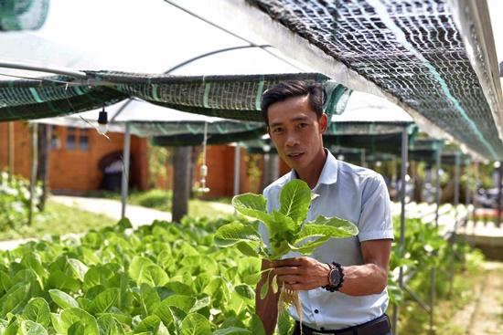 Anh Đặng Trần Gian Nhật Linh với vườn rau thủy canh của mình