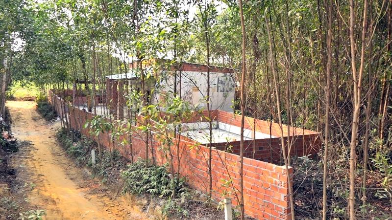 Giữa các mảnh vườn trồng cây mọc lên hàng chục công trình như nhà ở, chuồng trại... chỉ sau một thời gian ngắn. Ảnh: Đ. C