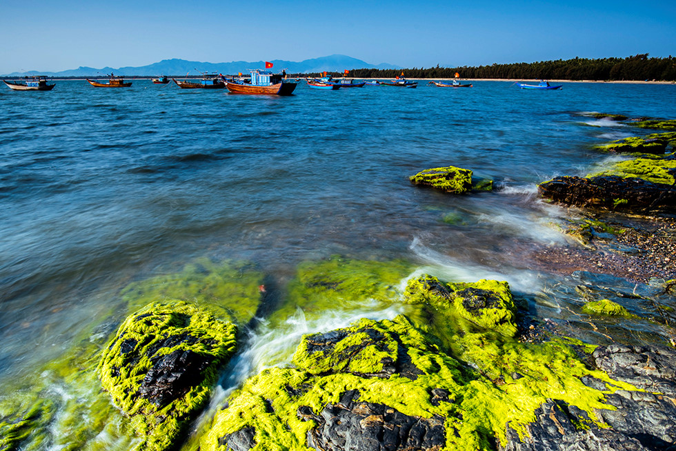 The green moss covered reef creates a beautiful picture like the fairyland.
