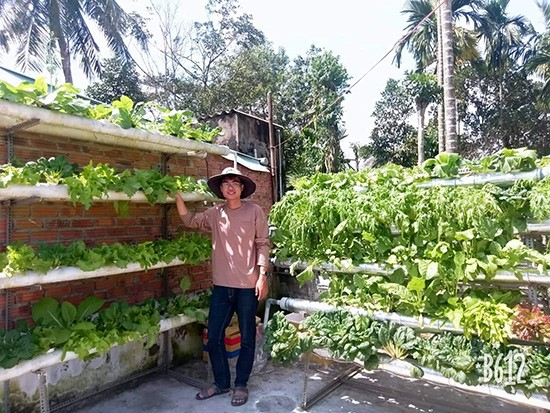 Ngo Tan Quyen and his model of smart vegetable garden in Quang Nam province