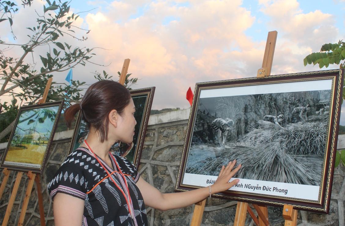 Photos exhibition.