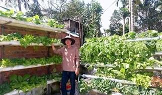 Ngo Tan Quyen and his model of smart vegetable garden in Quang Nam province
